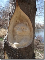 First on site carvings of 2011 Ohio 010
