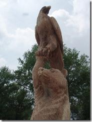 Bear an eagle in Ohio 008