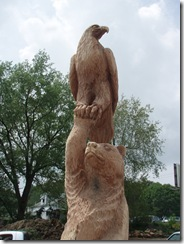 Bear an eagle in Ohio 016