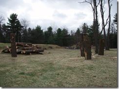 Logs and the new spot 011