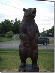 Big trout, big bear, and more 033