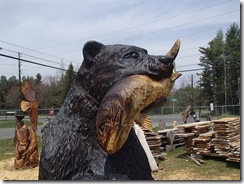 Fishing bear and gardens 024