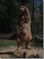 Bad red oak bear 010